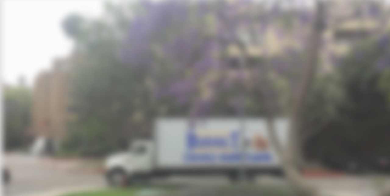 1 Seattle Professional Movers Royal Moving Company